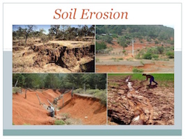Soil Erosion and Flood Control